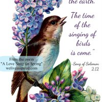 A Love Song for Spring- Five Minute Poetry