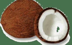 coconuts-welldone
