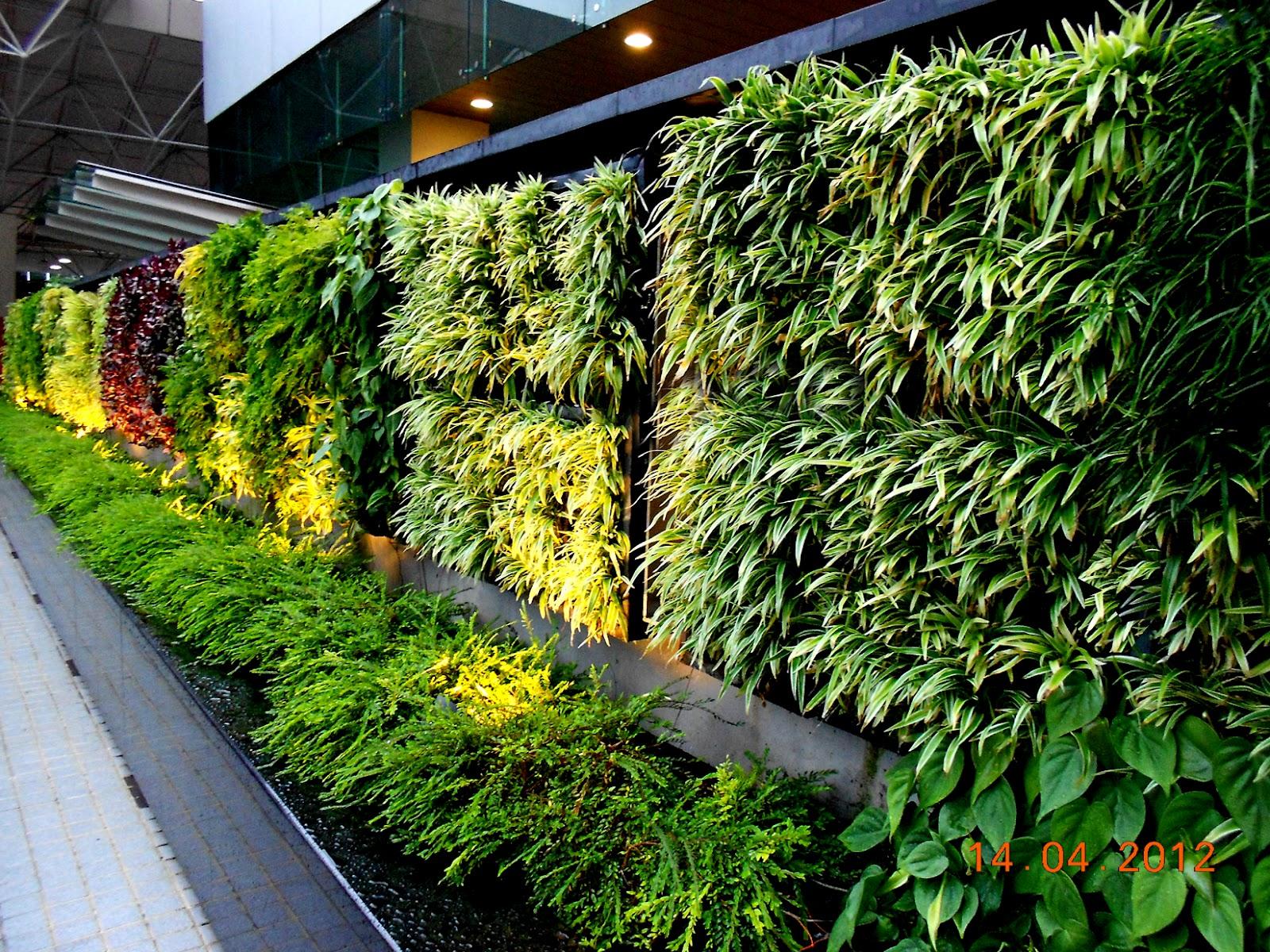 3d Wallpapers In Kenya Beautiful And Creative Ideas Of Vertical Garden Design