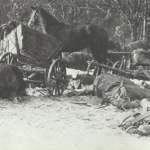 Kriegstagebuch 27. Februar 1945