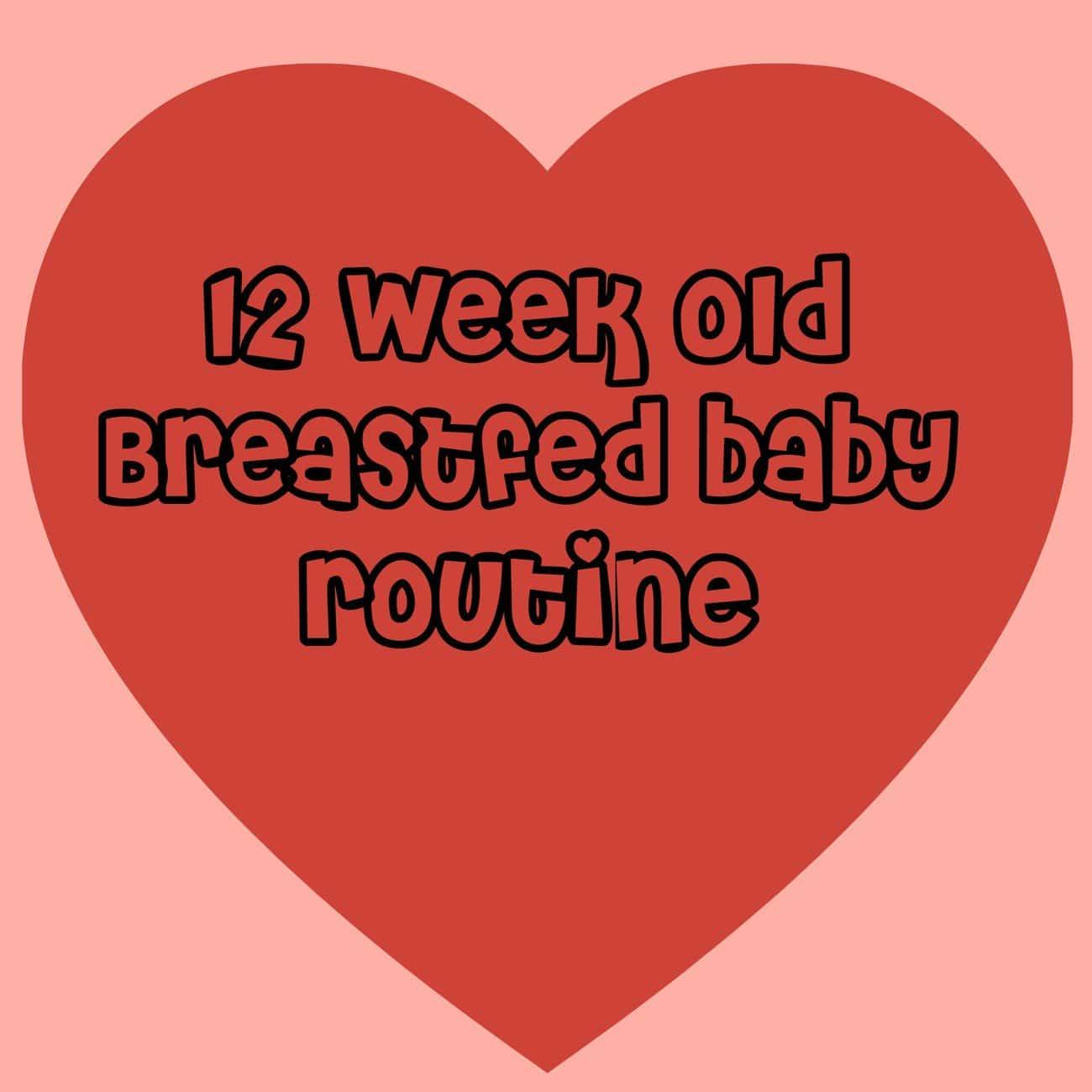 12 week old baby routine