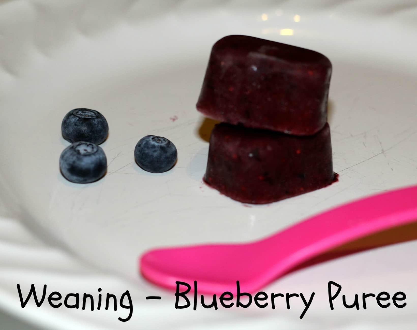 blueberry puree