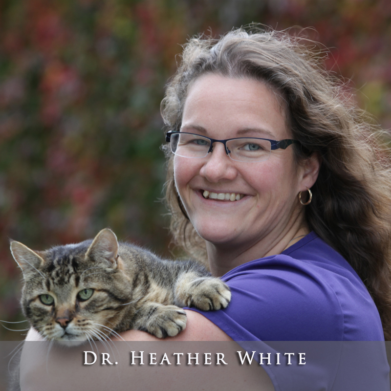 Dr. Heather White
