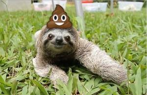 sloth poop emoji