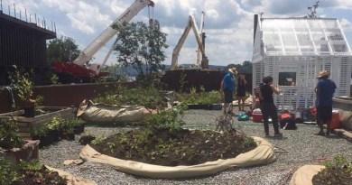 NOW Celebrates 50 Years; Swale Floating Food Farm Opens Saturday, Needs Volunteers