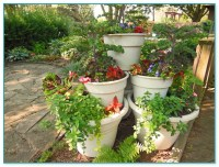 Best Soil For Container Gardening