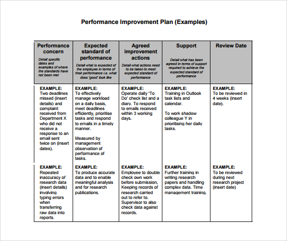 Performance Plan Examples Business Mentor