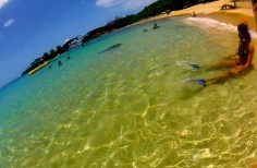 beach, snorkel, mask, tuba, gopro, beach, caribbean, blue, yellow