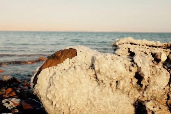 Salzkruste an Stein, Totes Meer, Jordanien