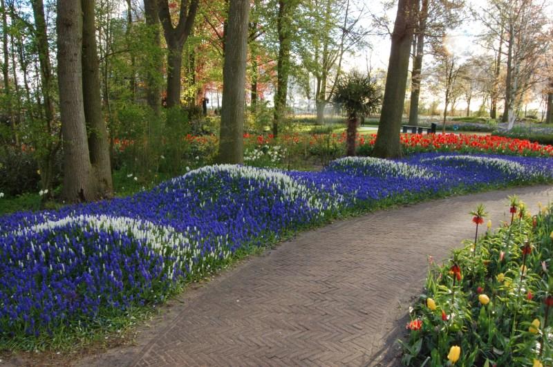 Large Of Royal Dutch Gardens