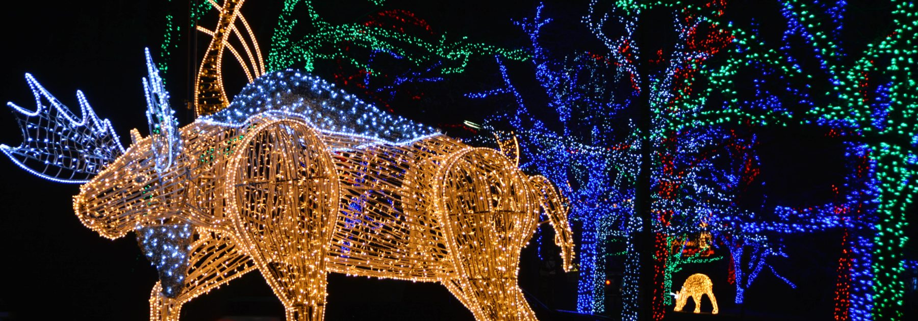 Christmas Led Lights Canada Niagara Falls Illuminations Lighting Displays Winter Festival