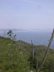 miyajima0