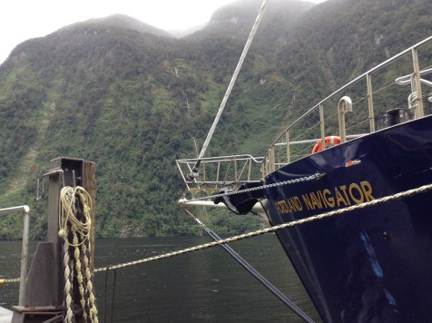 Fjordland Navigator Doubtful Sound