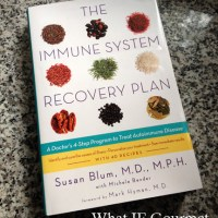 Book Review: The Immune System Recovery Plan by Susan Blum, M.D., M.P.H.