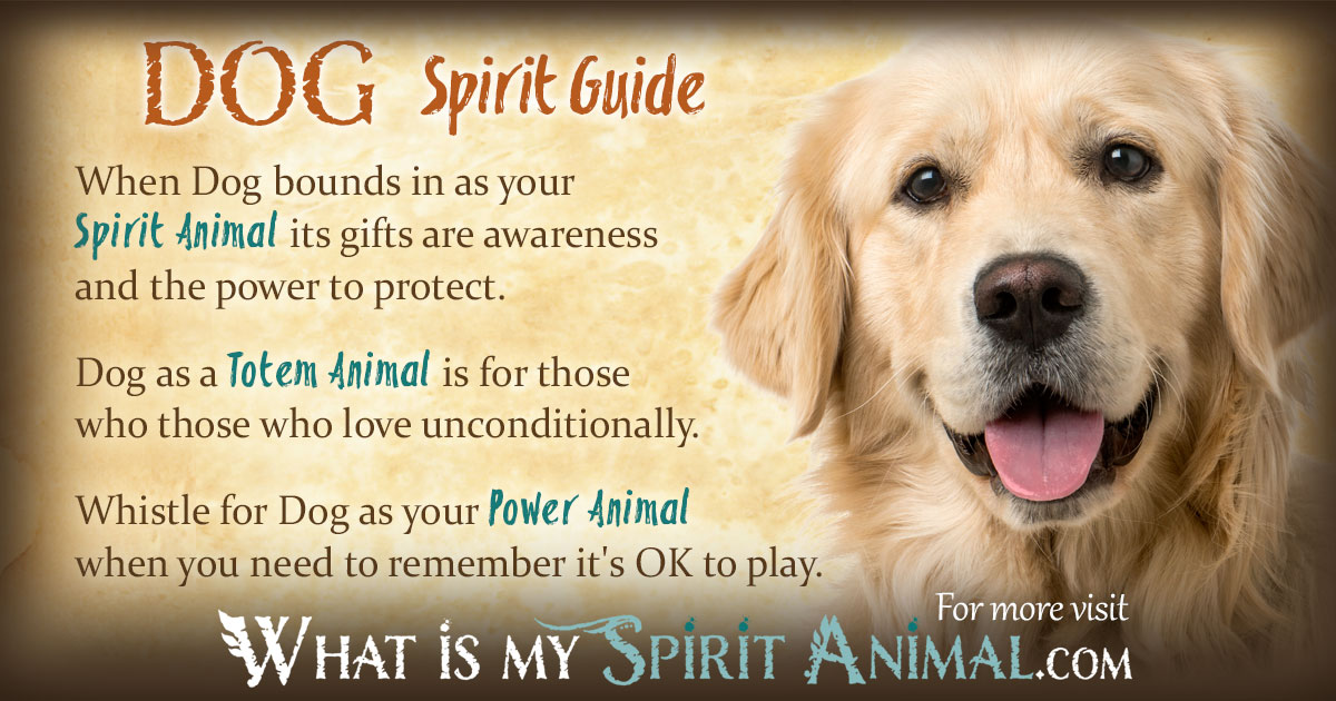 Unconditional Love Quotes Wallpapers Dog Symbolism Amp Meaning Spirit Totem Amp Power Animal