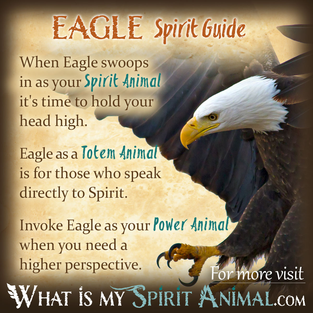 The Yellow Wallpaper Power Struggle Quotes Eagle Symbolism Amp Meaning Spirit Totem Amp Power Animal
