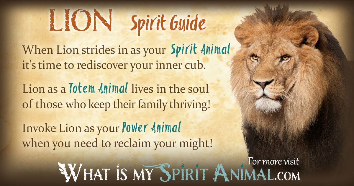The Yellow Wallpaper Power Struggle Quotes Lion Symbolism Amp Meaning Spirit Totem Amp Power Animal