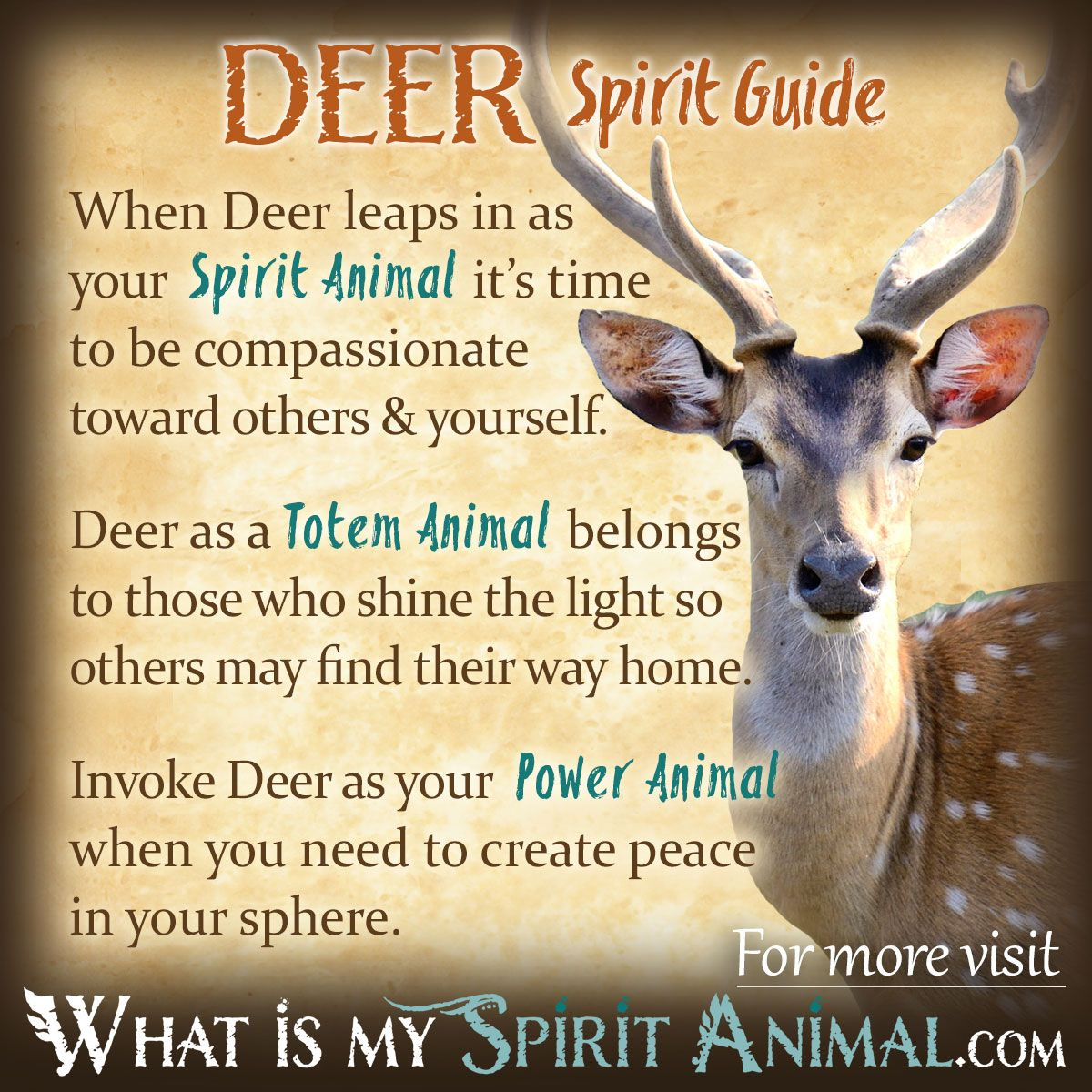 Fall Birds Wallpaper Deer Symbolism Amp Meaning Spirit Totem Amp Power Animal
