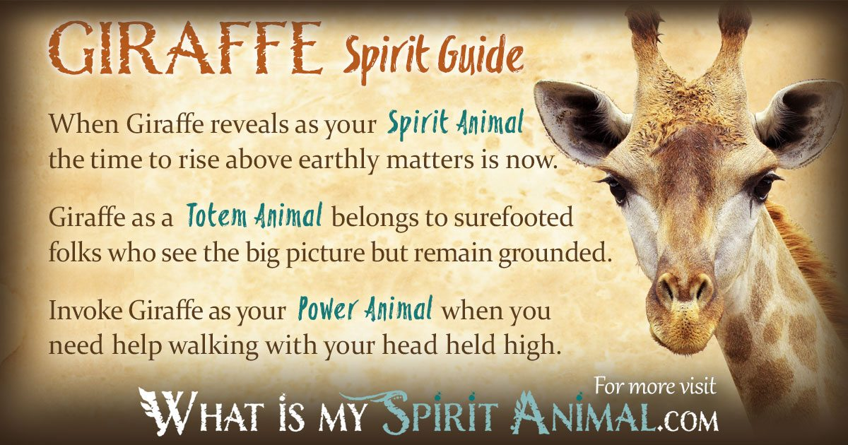Giraffe Symbolism  Meaning Spirit, Totem,  Power Animal