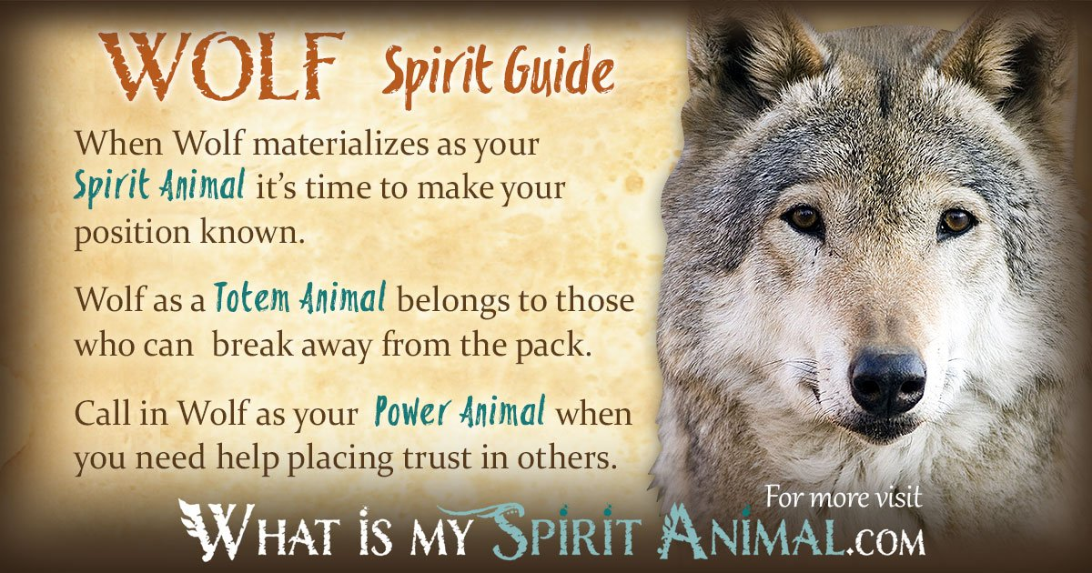 Lone Wolf Wallpaper Quote Wolf Symbolism Amp Meaning Spirit Totem Amp Power Animal
