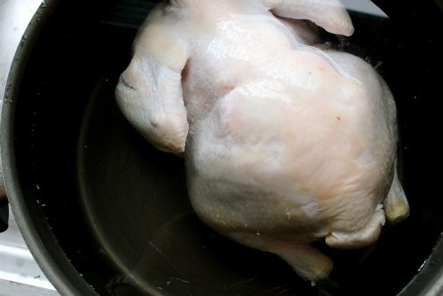 chick, matzah ball, soup