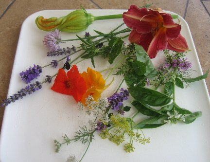 Edible Flowers Chart, Whats Cooking America Edible Flowers List