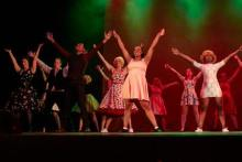 Beginners Musical Theatre Course