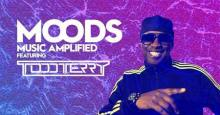 The Perception presents MOODS w/ Todd Terry