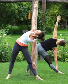 Yoga in the Rose Garden – Morden Hall Park
