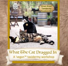 What The Cat Dragged In – A 'vegan'* taxidermy workshop