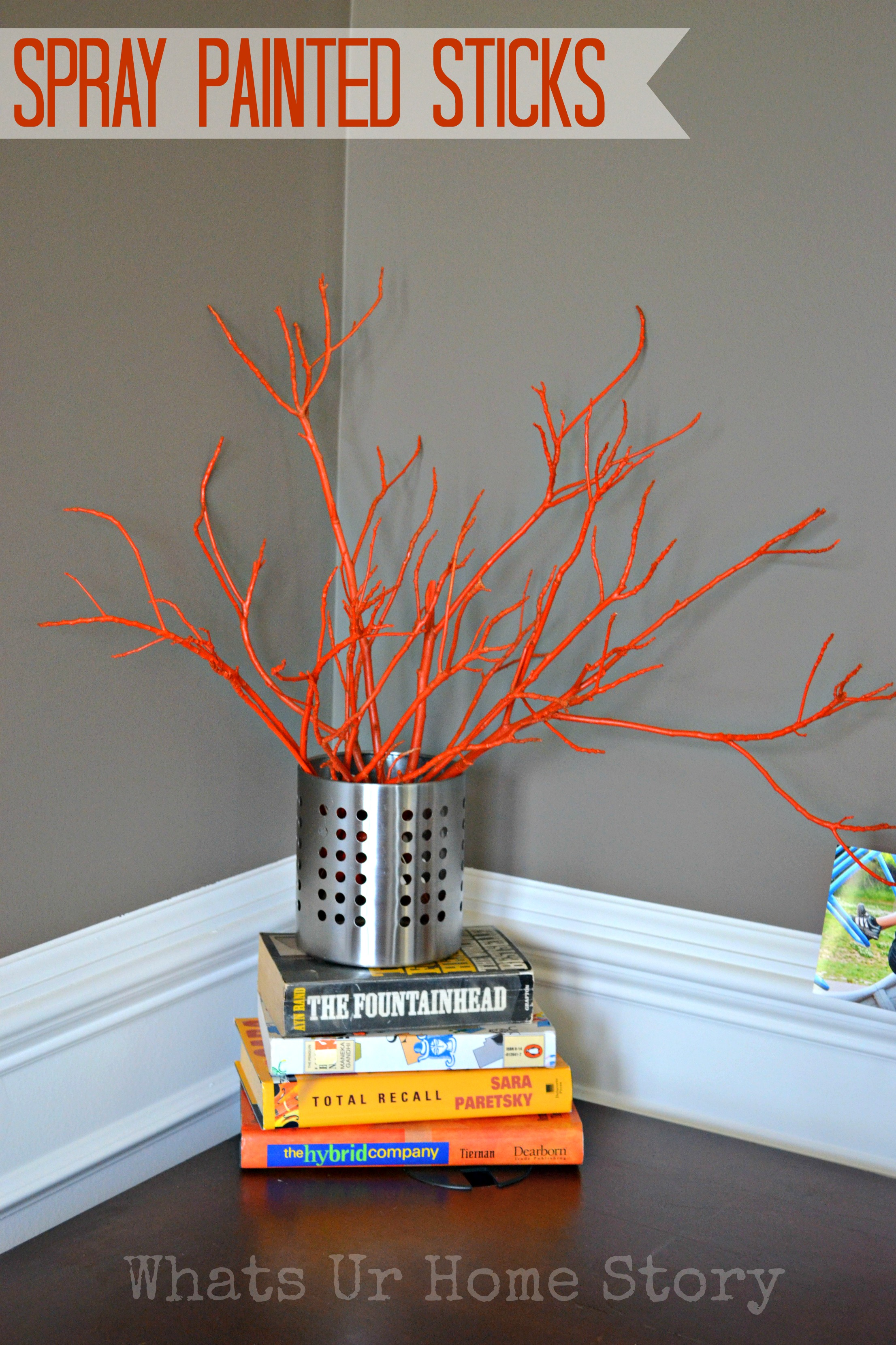 painted sticks diy spray painted tree branches martha stewart brooke. Black Bedroom Furniture Sets. Home Design Ideas