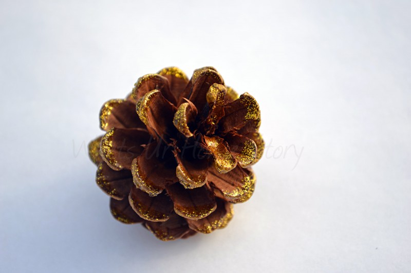 Whats Ur Home Story: glitter pine cone