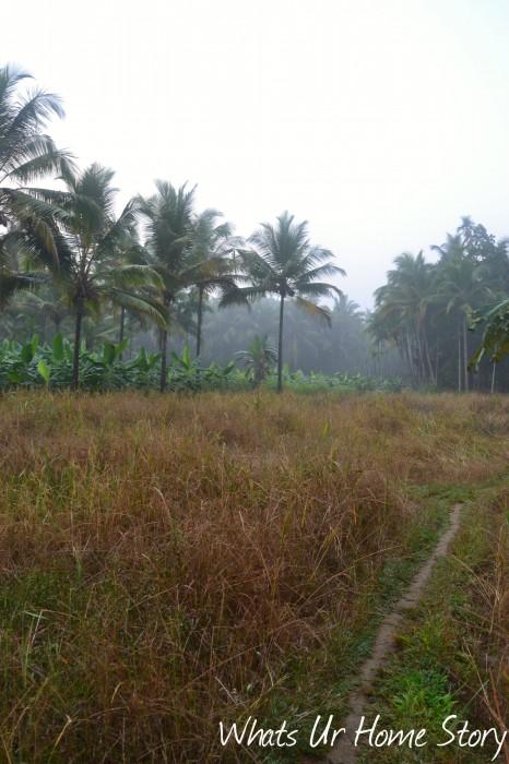 Whats Ur Home Story : Kerala village