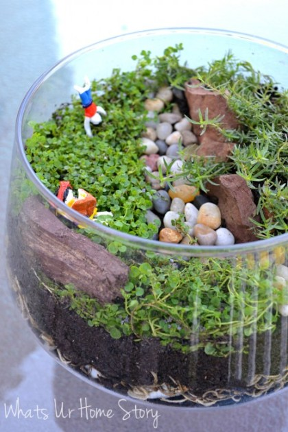 Minaiture gardens; How to make a terrarium, air dry clay figurines, corsican mint, Orange scented Thyme