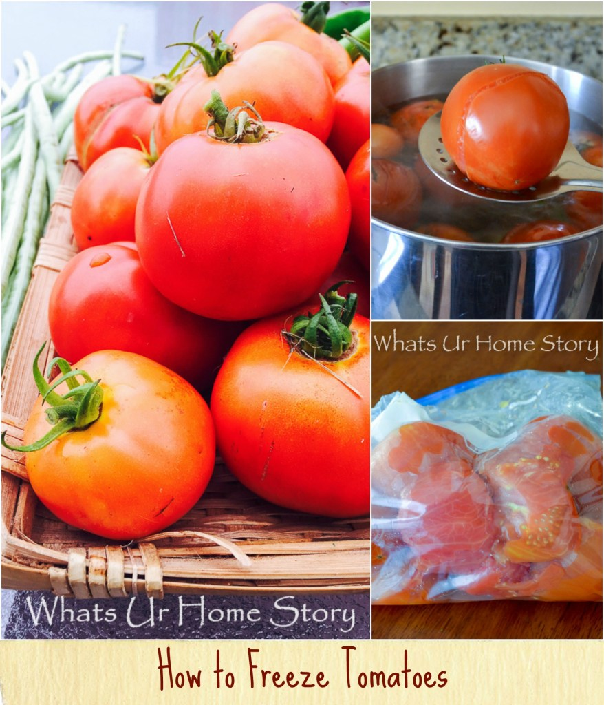 step by step tutorial on how to freeze tomatoes