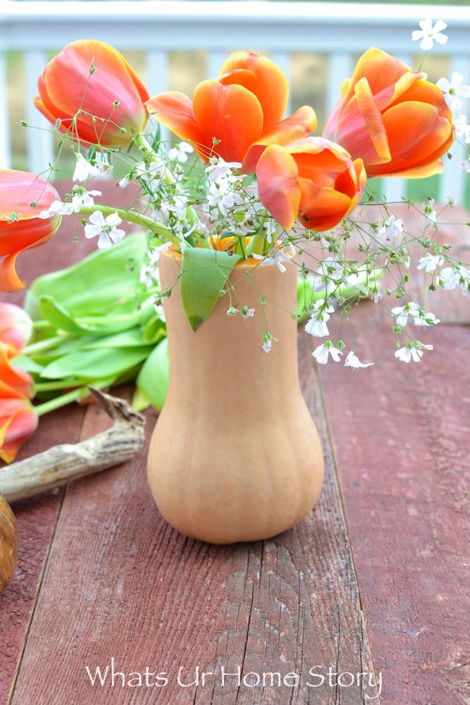 How to make a butternut squash centerpiece -butternut squash vase