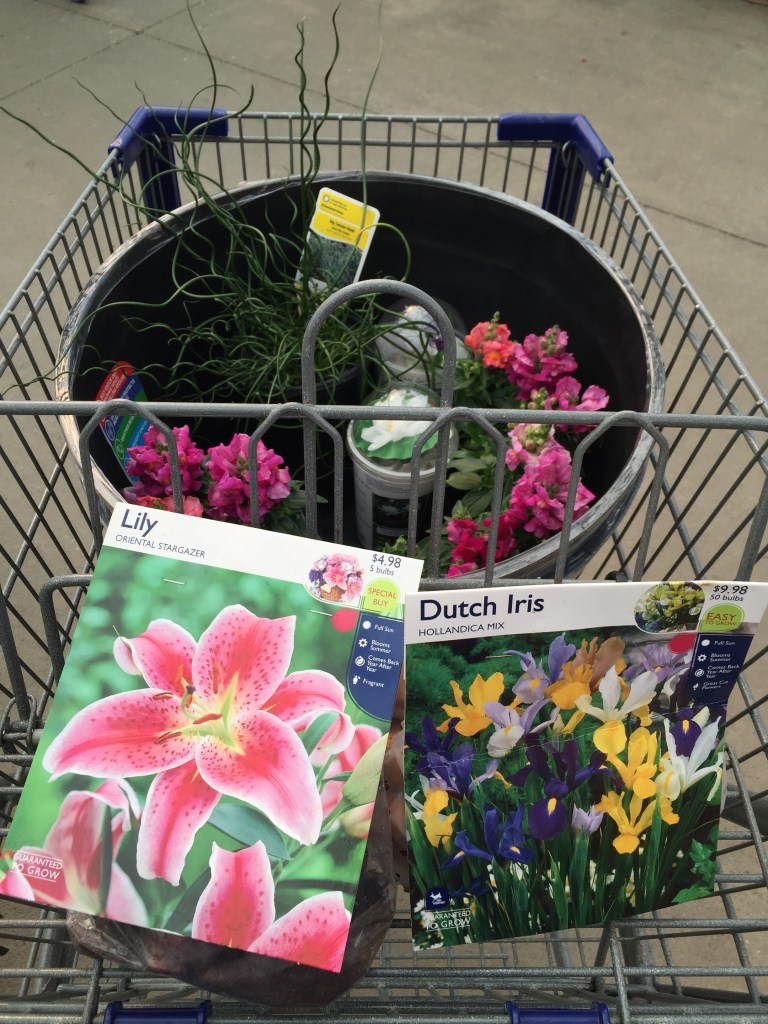 Spring plant shopping at Lowes