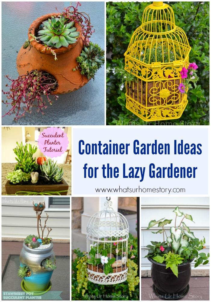 Container Garden Ideas for the Lazy Gardener