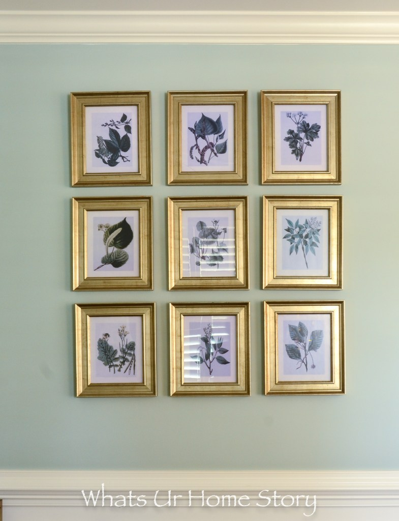 botanical gallery wall - mint green walls