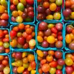 Learn How to Pick Tomatoes at the Farmer's Market with Executive Chef Mateo Bergamini