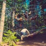 Illum Forest Webs