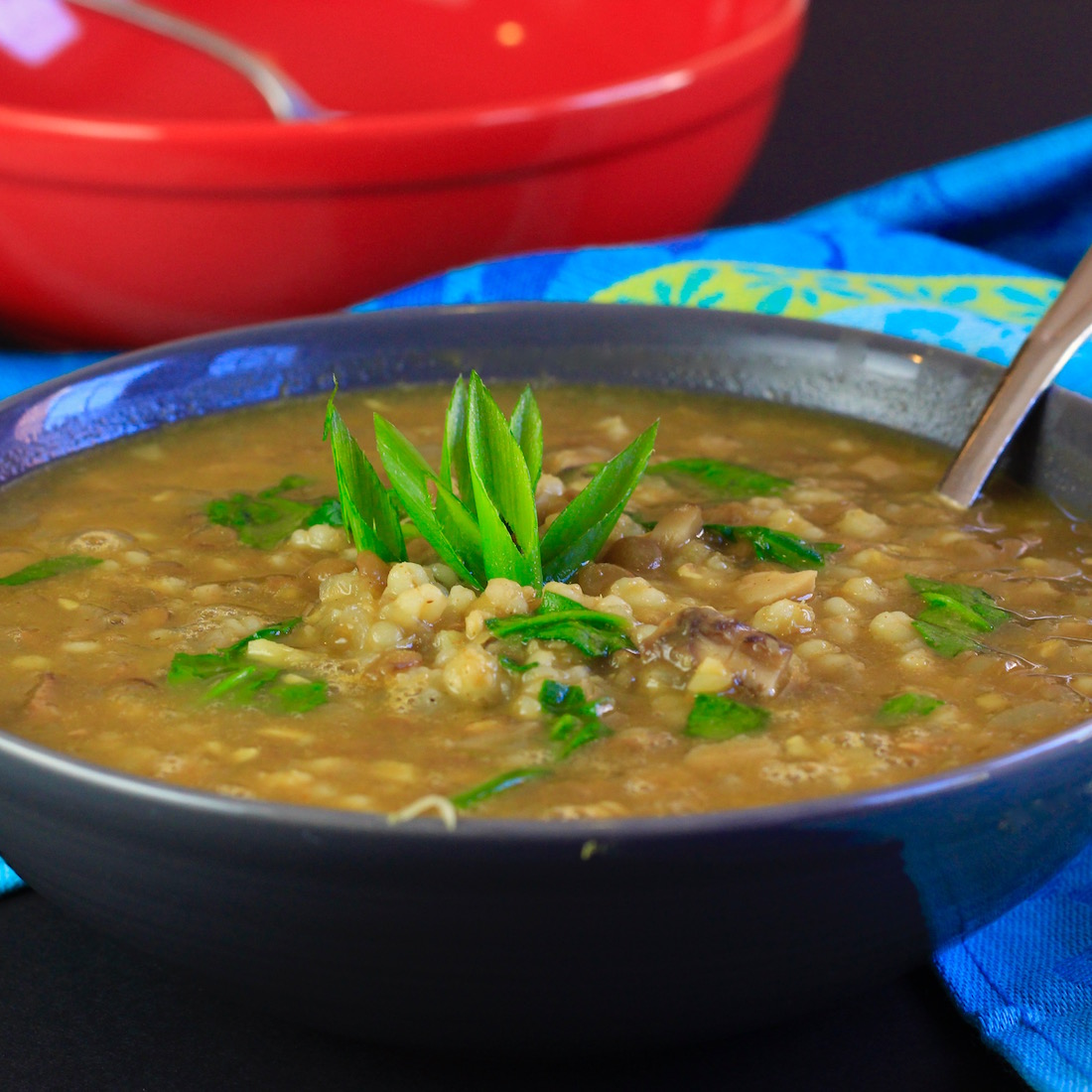 curried-mushroom-barley-lentil-soup-with-spinach3