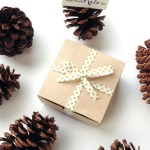 Now Available: Limited Edition Holiday 2014 What Would Kate Do? Royal Beauty Boxes