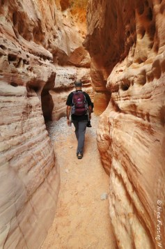 Slot canyon section of White Domes