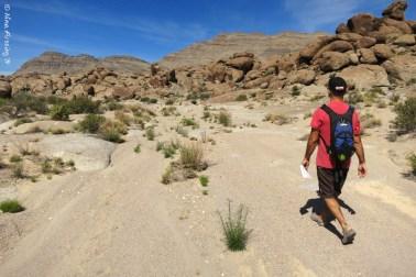 Walking Crystal Wash in search of rock art!