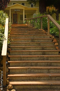 Winery stairs