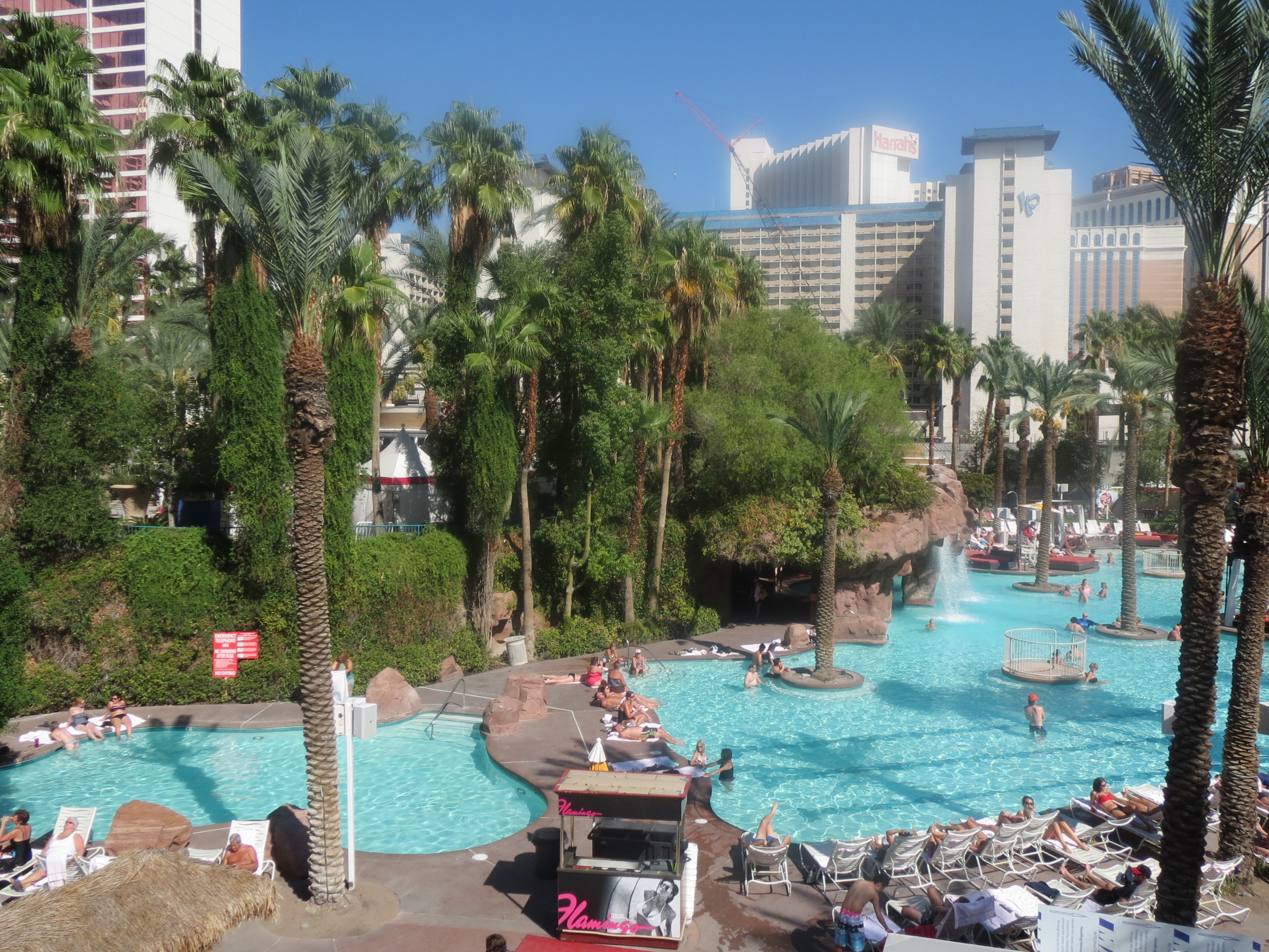 Flamingo Las Vegas Kid Pool Day 8 Saturday 22nd Las Vegas The Day I Fit Inside My