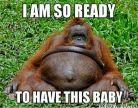Pregnancy Overdue Meme 1 3
