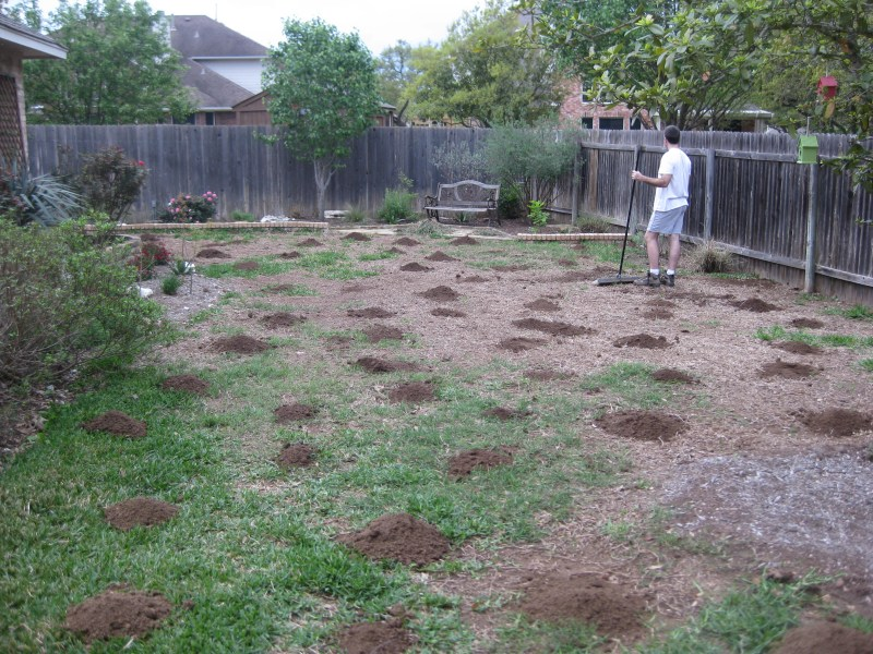 Large Of Dirt Backyard Makeover