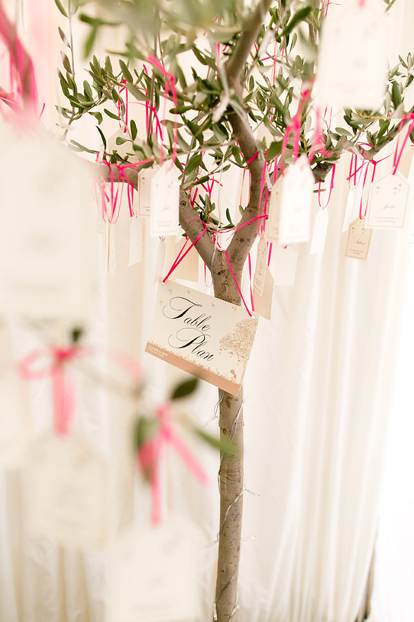 Magical Romantic Pink Green Fairy Lights Wedding Tree Table Plan Luggage Tags http://www.touchphotography.co.uk/